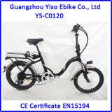 vélo électrique de la ville 36V250W verte