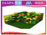 Campo de jogos interno dos miúdos maravilhosos de Qilong com boa qualidade (QL-1111P)