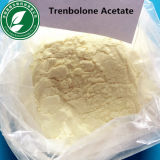 Aufbauendes androgenes Steroid Puder Trenbolone Azetat 10161-34-9 Tra