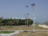 luz de rua solar do diodo emissor de luz de 20W 30W 45W 60W com 6m 7m 8m pólo claro
