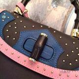 Recentste Elegante Ontwerpen van de Echte Handtassen van het Leer voor de Inzamelingen van Vrouwen