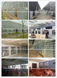 Gewächshaus-Ventilations-Absaugventilator-/Zange-Ventilator