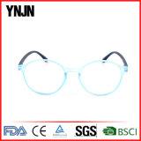 Vetri di lettura unisex di plastica all'ingrosso di modo di Ynjn Cina nuovi (YJ-RG207)