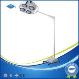 بيطريّة يشغل مصباح أضواء جراحيّة ([يد02-5و] [لد])