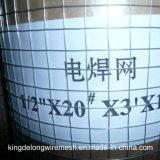 Edelstahl geschweißter SUS304 Maschendraht für Filter