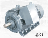 Y2 de bajo voltaje del motor eléctrico de alta potencia 250kw-8