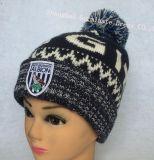 Теплые шлем жаккарда 100%Acrylic & шарф (JYB348)
