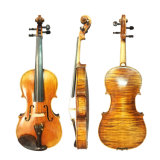 Professional Handmade allemand Stradivari violon arrière unique
