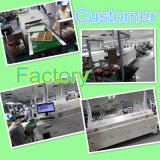 Macchina di saldatura del forno di riflusso del PWB per la catena di montaggio di SMT (giaguaro M6)