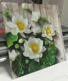 Глобальные светить панелей из ПВХ для струйной печати цифровых 5D УФ-принтер