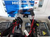 Gelijkstroom 24V 55W 9006 HID Lamp met Regular Ballast