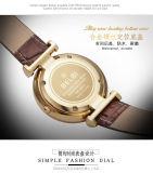 Cuir Belbi Mesdames Watch Loisirs étanche simple de la série montre à quartz