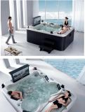 Hot Tub Whirlpool SPA Bathtub met TV, DVD, Cover, Step (m-3304)