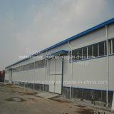 Gruppo di lavoro della struttura d'acciaio dell'ampia luce liberato di con alto di qualità standard