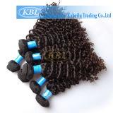 고품질 곱슬머리 브라질 Virgin 머리
