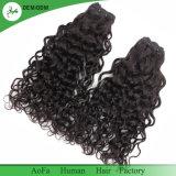 Aofaの毛の工場女性のためのインドの巻き毛のRemyの人間の毛髪