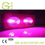 La PANNOCCHIA piena LED di spettro 400W coltiva la lampada per Growing Flowering della pianta d'appartamento e della serra