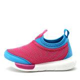 Sports casuale Shoes Running Flat Franare-su Footwear per Children (AK715)