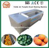 Vegetable моющее машинаа щетки тыквы шайбы Tsxq-80