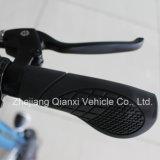 Популярные складные электроэнергии автомобиля Qx-1001