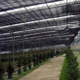 De goedkoopste Serre van de multi-Spanwijdte binnen het In de schaduw stellen van Systeem met de Prijs van de Fabriek