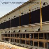 Maison de la volaille pour strucuture de construction en acier