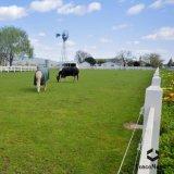 Top Quality 3 Rail Horse Vinyl Fencing