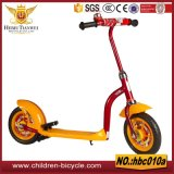 Two Wheels Balance Bike and Baby Scooters