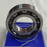 Anelli di ceramica del cuscinetto a sfere di Zro2/Si3n4/Sic