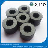 De ceramische Veelpolige Ringvormige Magneet van het Ferriet van Ringen