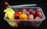 Pp.-Mikrowellen-wegwerfbarer Plastiknahrungsmittelbehälter, Kunststoffgehäuse