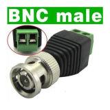 Connecteur de coaxial de mâle de BNC pour le système d'appareil-photo de télévision en circuit fermé (AF05)