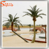 Artificial personalizzato Palm Tree per Decoration