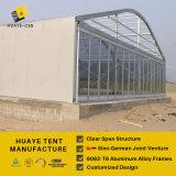 Più nuova grande tenda Nigeria della tenda foranea del Gazebo del baldacchino della decorazione
