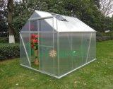 Estufa Growell Painel em policarbonato de 4 mm a pé em Hobby Garden Emissões (P6), 6 x 8