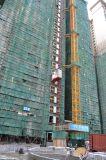 Élévateur évalué de grue de construction de construction de capacité de charge d'installation