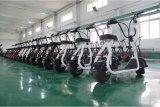 Электрический Bike с 350W мотором, литий 48V/10ah