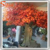 도매 섬유유리 인공적인 가짜 단풍나무 실내와 옥외 사용