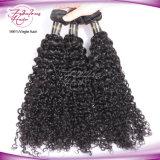 Человеческие волосы индийской надкожицы курчавых волос полной естественные индийские дешевые