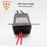 Entrada de información electrónica de la bobina de ignición del mechero de gas/del encendedor de la estufa 220V