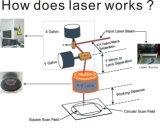 Alumínio de /Iron/ do aço inoxidável da venda quente/aço de carbono/máquina/marcador/gravador de bronze de cobre /Printer da marcação do laser da fibra