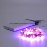 Lumières étoilées de chaîne de caractères de Noël du pouvoir DEL d'USB avec 20 le mini micro DEL sur le long fil argenté de 6.6FT