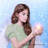 Het nieuwe Ontworpen Gestalte gegeven Licht van de Sneeuwval van de Lichte Projector van de Laser Lichte met Ver rf