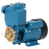 Pompe à eau périphérique domestique extérieure de qualité avec la série Ce-Généraliste