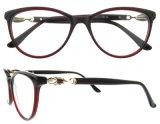 Marco óptico de Eyewear de la manera de los vidrios del acetato de China