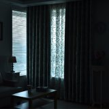 Милый занавес окна светомаскировки жаккарда листьев зеленого цвета конструкции (06F0030)