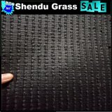 13650tuft/M2密度の人工的な草のカーペット25mm