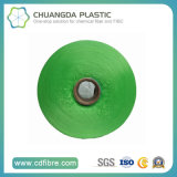 Filato del filato FDY del polipropilene della moquette pp Bcf in Cina
