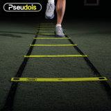 Scaletta di agilità per addestramento