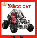 Alta calidad 250cc solo asiento Beach Buggy